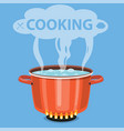 boiling water in pan vector image vector image