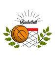 emblem basketball game icon vector image vector image