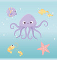 octopus fishes starfish shrimp life cartoon under vector image