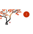persimmon tree with big orange fruits and big red vector image