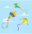 set of kites vector image vector image