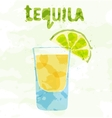 Tequila cocktail vector image