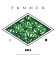 tropical leaves in a rhombus web banner vector image vector image