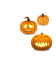 a set of pumpkins on a white background for vector image vector image