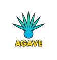 agave plant element for logo design on white vector image vector image