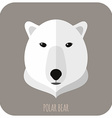 Animal Portrait With Flat Design Polar Bear vector image