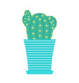 green cacti with flowers in flowerpot vector image vector image
