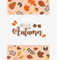 hello autumn banner season design vector image