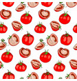 seamless pattern of tomatoes whole and pieces vector image