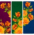 Yellow Rose frames set vector image vector image