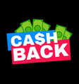 cash back modern flat style vector image vector image