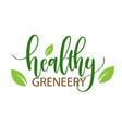 healthy greneery leaves white background im vector image vector image