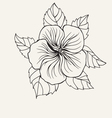 Hibiscus flower leaf for Coloring book page vector image vector image