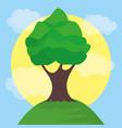 landscape tree sun sky design vector image vector image