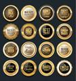 luxury golden design elements collection vector image vector image
