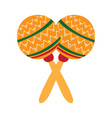 pair of mmexican maraca icon vector image