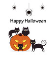 pumpkin with cats owl and spiders vector image vector image
