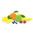 set juicy fruits and berries grouped in flat vector image vector image