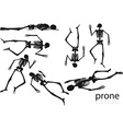 skeleton silhouette in prone pose vector image vector image