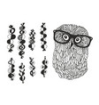 smart owl and the set of hand drawn design vector image vector image