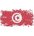 Tunisian grunge tile flag vector image vector image