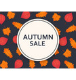 autumn sale background with leaves and banner vector image