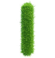 capital letter i from grass on white vector image vector image