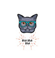 grey cat in smart glasses vector image vector image