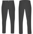 grey pants vector image
