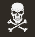 pirate logo with skull and bones vector image vector image