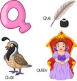q alphabet vector image vector image