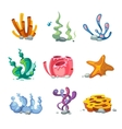 Seaweeds aquarium decoration cartoon set vector image