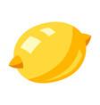 stylized lemon vector image