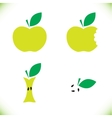 Very tasty green apple vector image vector image
