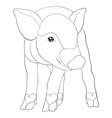 adult coloring bookpage a cute pig image for vector image vector image