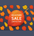 autumn sale discount background with a red yellow vector image vector image