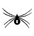 black widow silhouette isolated on white backgroun vector image vector image