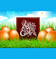 orange eggs in a field of grass with blue sky vector image vector image