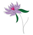 purple lflower with green leaves on white vector image vector image