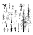 Set of dead trees vector image vector image