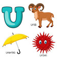 u alphabet vector image