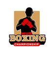 boxing championship icon template of boxer vector image