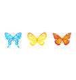 bright butterfies set vector image