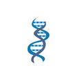 dna or genome molecule vector image