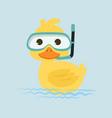 duck snorkeling in water vector image
