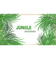 jungle background green tropical palm leaves vector image vector image