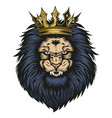 lion head crown angry animal wildlife vector image vector image