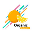 orange simple background vector image vector image