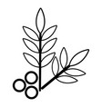 spa eco leafs icon outline style vector image