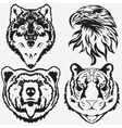 Tiger Eagle Wolf Bear logo set vector image